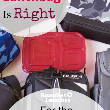 ELB Which Lunch Bag is Right for You? from bunchesolunches.com